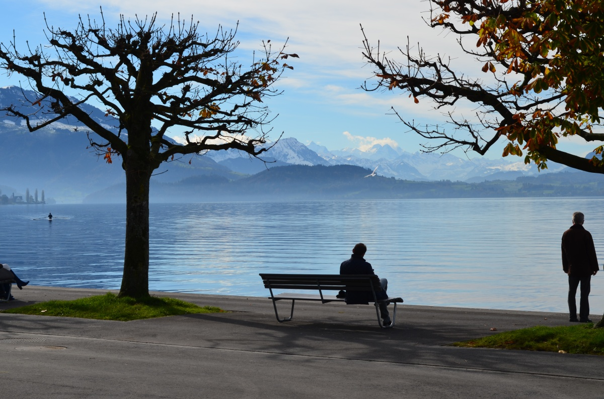Moseying Around Lake Zug
